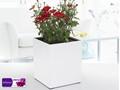 Gf1- clássico modelagem bonita retangular branca flor pote& auto- potenciômetro molhando& quadrados de flores de plástico pot