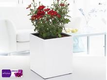 Gf1- klasik modelleme güzel beyaz dikdörtgen saksı ve kendini- sulama potu ve kare plastik çiçek pot