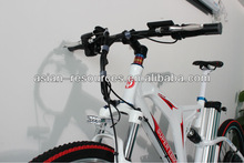 Import 1000w front wheel electric bike battery in frame electric bike