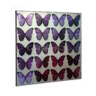 Metal Frame Painting Wall Arts/Alumium Sheet Arts/Butterfly Wall Arts