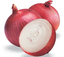 Egyptian Fresh Red Onions
