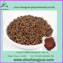 factory price grape seed extract p.e.