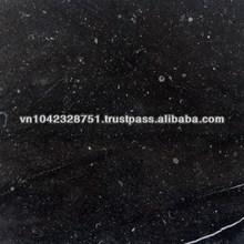 Vietnam Black Granite