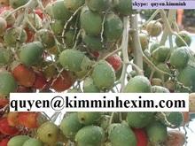 Betel Nut (contact: quyen@kimminhexim.com)