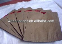 paper bag mango protection
