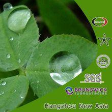 Green Tea Powder Extract