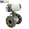 Anti Corrosion Ex proof sulfuric acid flow meter