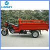 Gasoline Tricycle for Cargo with Large Box