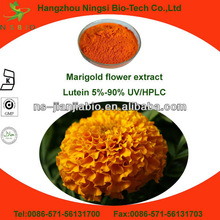 Marigold flower extract marigold plant extract
