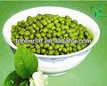 Cuisson haricots mungo pour qualité alimentaire 2013 new crop