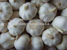 2014 Hot Sale White Fresh Garlic
