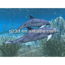 decorating walls picture frames of dolphin