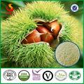 Edulcorante natural verde orgánico congelación- secas orgánica puro polvo de castañas