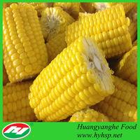 frozen Sweet Corn Cob 7.2cm size