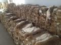 Approvisionnement direct d'usine grass fourrure de lapin peau de lapin