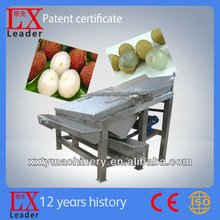Tianyu For Pulp Or Juice Fruit Processing Machine For Litchi