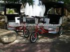 electric auto pedicab rickshaw three wheel motorcycle