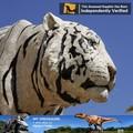 بلدي باركدينو-- f044 النمور البرية البيض في الهواء الطلق تمثال الحيوان الحيوانات الحية