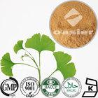 Ginkgo Biloba Leaf Extract Powder