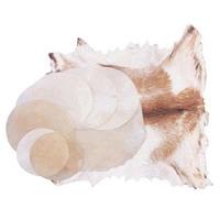 Vellum Drum Heads | Vellum Goat Skin |