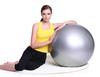 International Standard 65cm Gym Ball Fitness Pilates Aerobics Slimming Exercise Yoga Ball