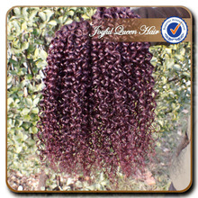JQ hair 99j kinky curl hair weaves Indian curly hair14-22inch