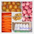 Lista de legumes e frutas