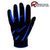 RIGWARL 2014 High quality professional fashion cheap motorcycle gloves