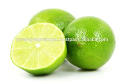Fresh Guntur Lemon Supplier