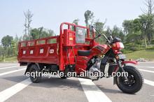 New Trike 3 Wheel Motorcycle for Sale