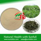100% Natural antioxidant EGCG 70% from Green Tea