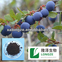 100% Pure natural high quality blueberry extract powder anthocyanin 25% , Anthocyanidins & Pterostilbene