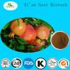 Beauty Product Fruit Powder Pomegranate Extract Punicalagin