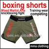 Fight wear Kickboxing boxing shorts for mma clothing