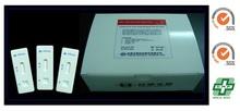 Hepatitis B Surface Antigen HBsAg Rapid Test