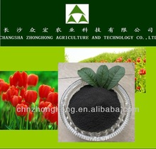 Potassium Humate From ZH with best quality base fertilizer for soil or plant