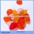 gmp fabbrica foto di orso gommoso frutta a forma di caramella gommosa foto di orso gommoso