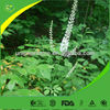 Factory supply 100% Pure Black Cohosh Extract (no addition)