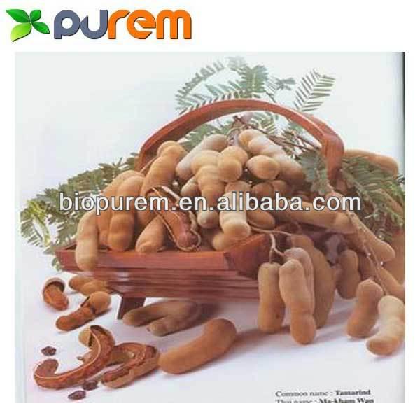 Tamarindus Indica Extract Top Quality Tamarindus Indica