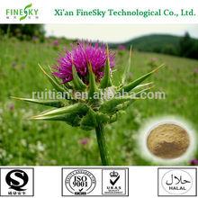 milk thistle seed extract,milk thistle seed p.e,milk thistle seed powder