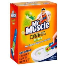 MR MUSCLE GEL TOILET CLEANER ALL KINDS