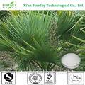 100% puro extracto de la planta extracto de saw palmetto, extracto de saw palmetto serenoa repens( bartr.) pequeño, saw palmetto extracto de ácidos grasos