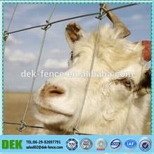 Galvanized Sheep/Farm/Field/Deer Wire Mesh Fence(Hot Sale)