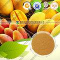 preço de fábrica mango extrato de folhas