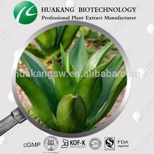 Productos naturales de Aloe Vera extracto en polvo