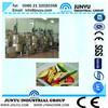 High technology fruit chips vacuum frying machine