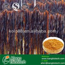 Ocean Plant Extract Kelp/Seaweed extract power