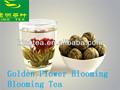تزهر الشاي آذريون