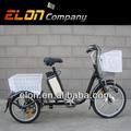 Triciclo elétrico com pedal assistida( eletrônico- tdr03)