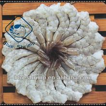 De gambas vannamei& pelados desvenados cola- sobre congelados de camarón blanco